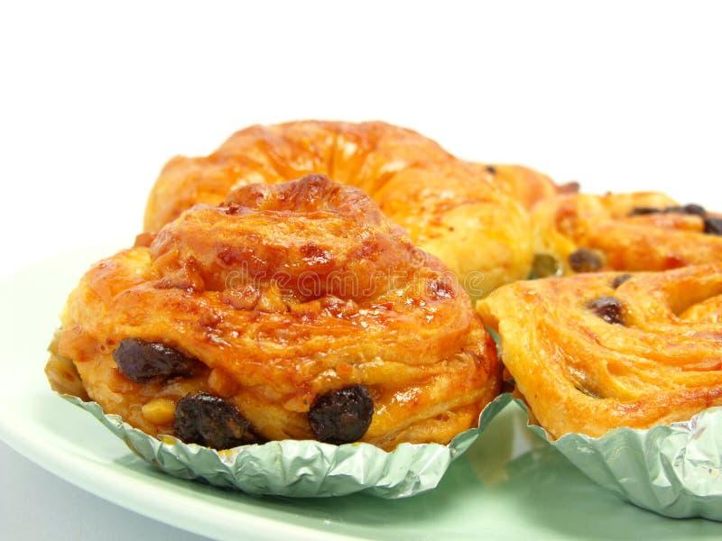 Display of raisin brioche sweet danish pastries. Raisin danish isolated on white background royalty free stock photo