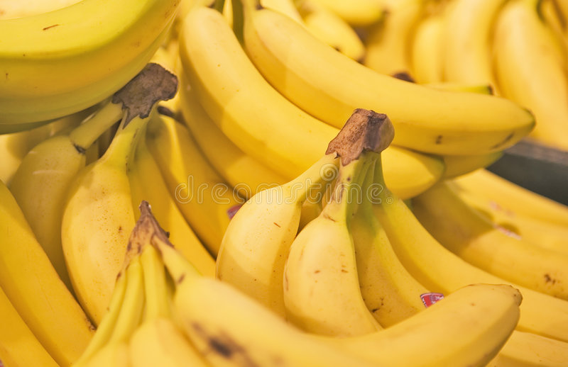A display of yellow bunches of Bananas. In a Grocery Store stock photos