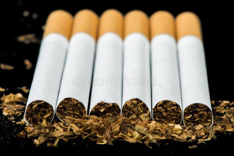 Disposé en cigarettes d'une rangée photographie stock libre de droits