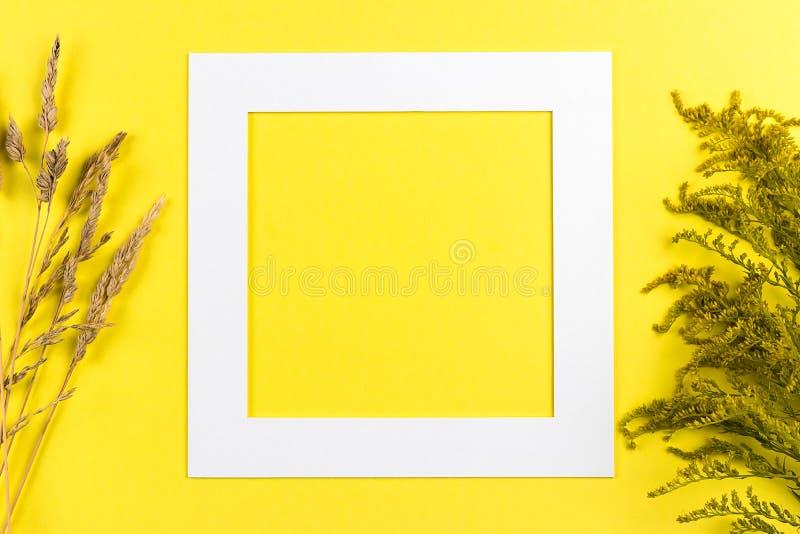 Disposição criativa do verão feita dos wildflowers e da grama seca no fundo amarelo Conceito ex?tico do ver?o m?nimo com espa?o d foto de stock royalty free