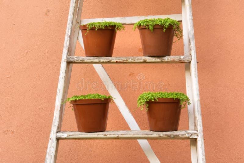 Download Disposição De Potenciômetros Da Planta Imagem de Stock - Imagem de escada, interior: 29839821