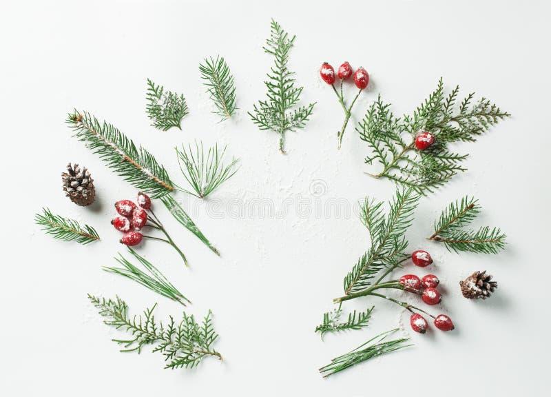 Disposición creativa de la maqueta hecha del árbol de navidad y de ramas nevosas rojas de las bayas del acebo con el espacio de l foto de archivo libre de regalías