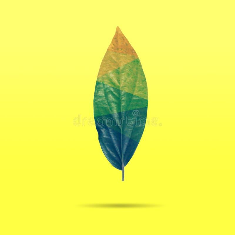 Disposición creativa de las hojas de otoño coloridas en fondo amarillo Estilo mínimo, concepto mínimo del verano Endecha plana libre illustration