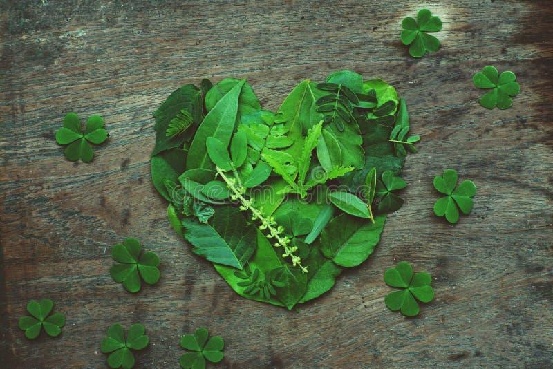 Disposición creativa de las ilustraciones de las hojas verdes clasificadas dispuestas en la forma del corazón, concepto romántico fotos de archivo