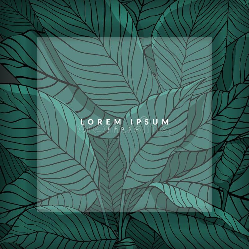 Disposición creativa hecha del bosquejo de hojas verdes como fondo con la capa blanca para el espacio de la copia, endecha plana  stock de ilustración