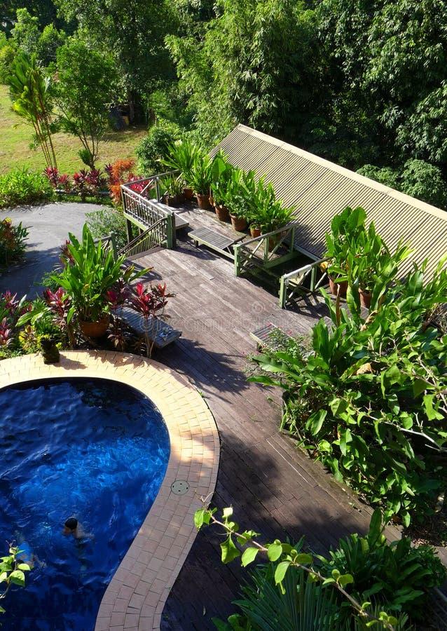 Disposición de madera del patio y de la piscina con ajardinar fotos de archivo