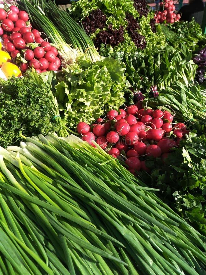 Disposición vegetal en el contador del mercado: cebollas verdes, rábanos rojos, lechuga, perejil rizado, albahaca púrpura, alazán fotos de archivo libres de regalías
