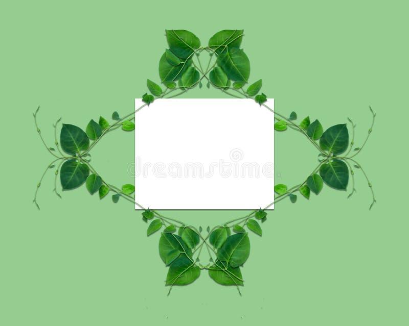Disposici?n creativa hecha de flores y de hojas con la nota de la tarjeta de papel Endecha plana Concepto de la naturaleza ilustración del vector
