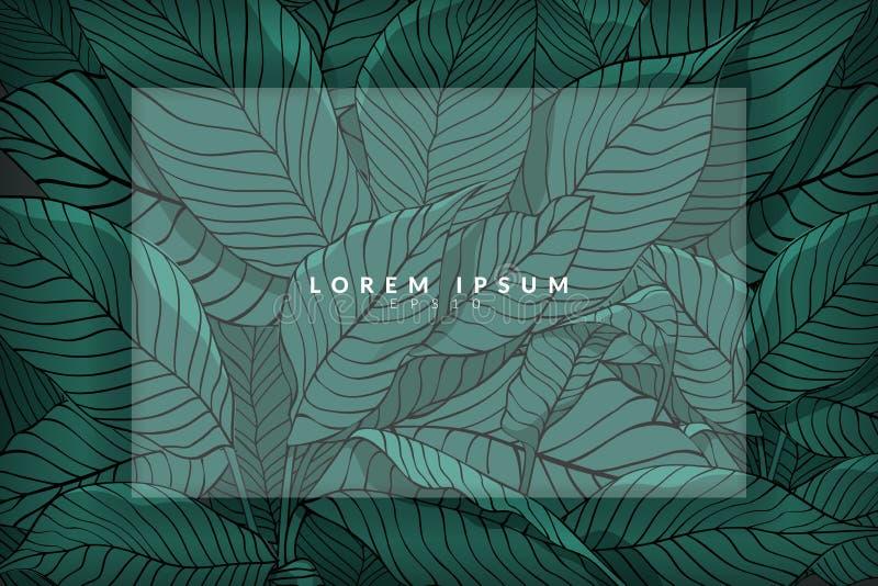 Disposici?n creativa hecha del bosquejo de hojas verdes como fondo con la capa blanca para el espacio de la copia, endecha plana  ilustración del vector