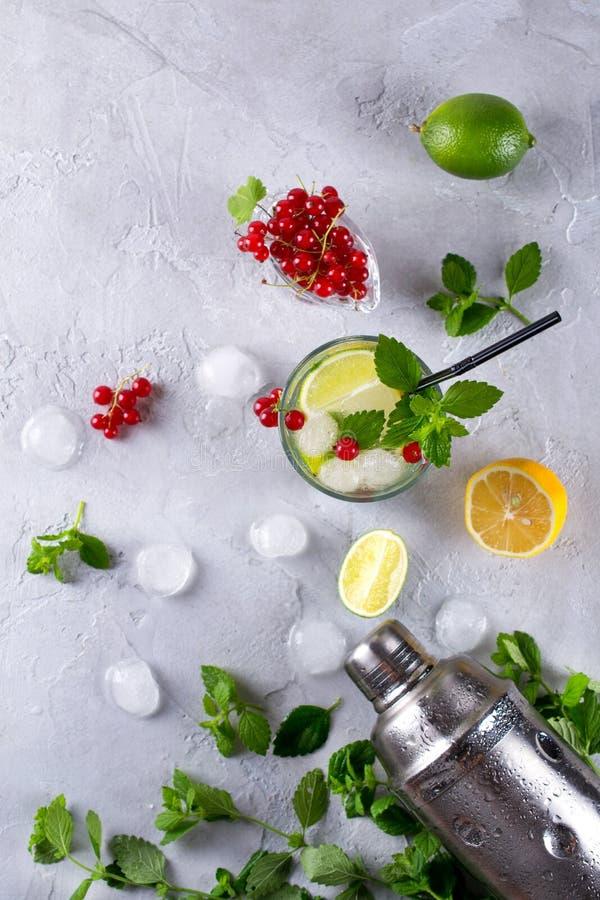 Dispositif trembleur de cocktail, citron, chaux, feuilles en bon état, groseille rouge et glace pour préparer un cocktail images stock
