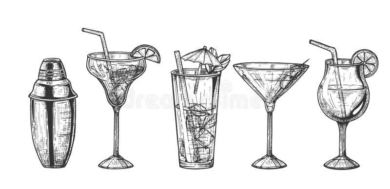 Dispositif trembleur et ensemble exotique de cocktails illustration stock