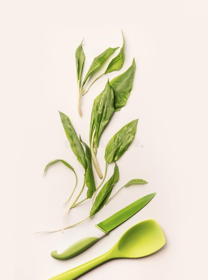 Disposition créative avec les feuilles vertes fraîches d'ail sauvage, couteau et cuillère de cuisson sur le fond blanc photos libres de droits