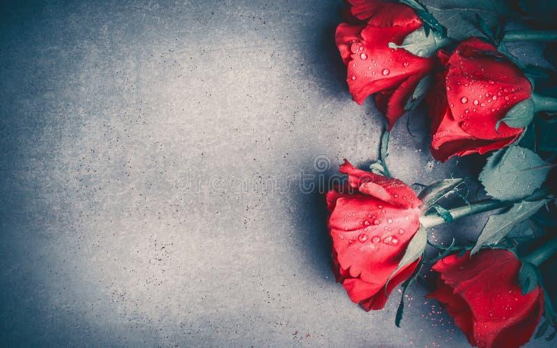 Disposition de roses rouges sur le fond de bureau gris, vue supérieure Jour de valentines, datation et carte de voeux d'amour, an photographie stock libre de droits