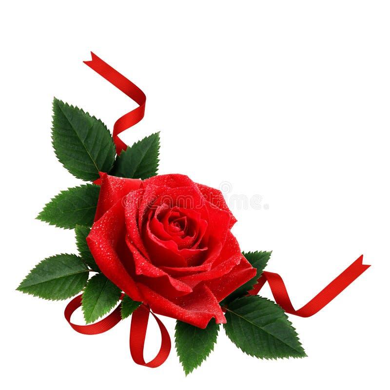 Disposition de ruban de fleur et de soie de rose de rouge photographie stock