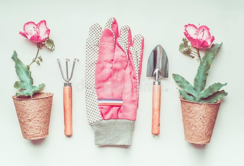 Disposition De Trousse D\'outils De Jardinage Avec L\'usine, Le Pot De ...