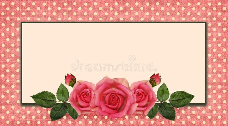 Disposition et cadre de fleurs de Rose illustration stock
