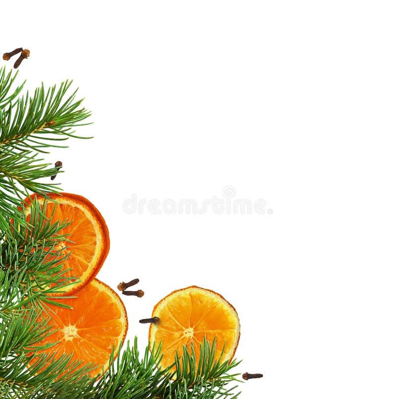 Disposition faisante le coin de Noël avec les oranges et les brindilles sèches de pin image libre de droits