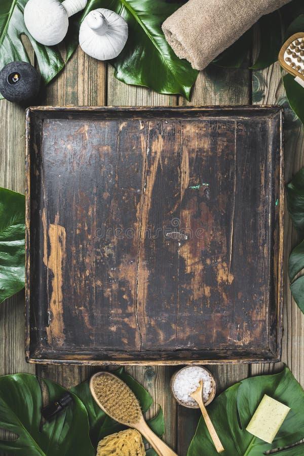Disposition plate de configuration avec des feuilles de monstera et des produits cosmétiques de soin photos stock