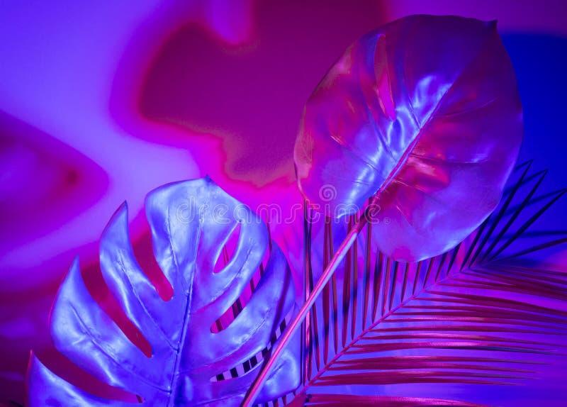 Disposition pourpre tropicale créative de feuilles Concept surnaturel Configuration plate Couleurs ultra-violettes image stock