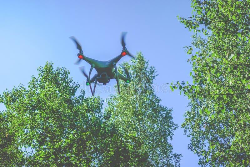 Dispositivo do zangão na floresta fotos de stock