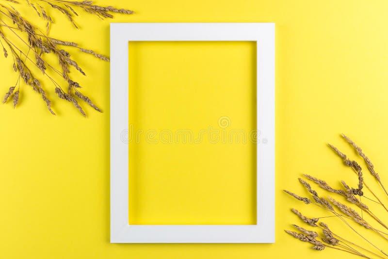 Disposizione creativa di estate fatta dei wildflowers e dell'erba asciutta su fondo giallo Concetto esotico di estate minima con  fotografie stock libere da diritti