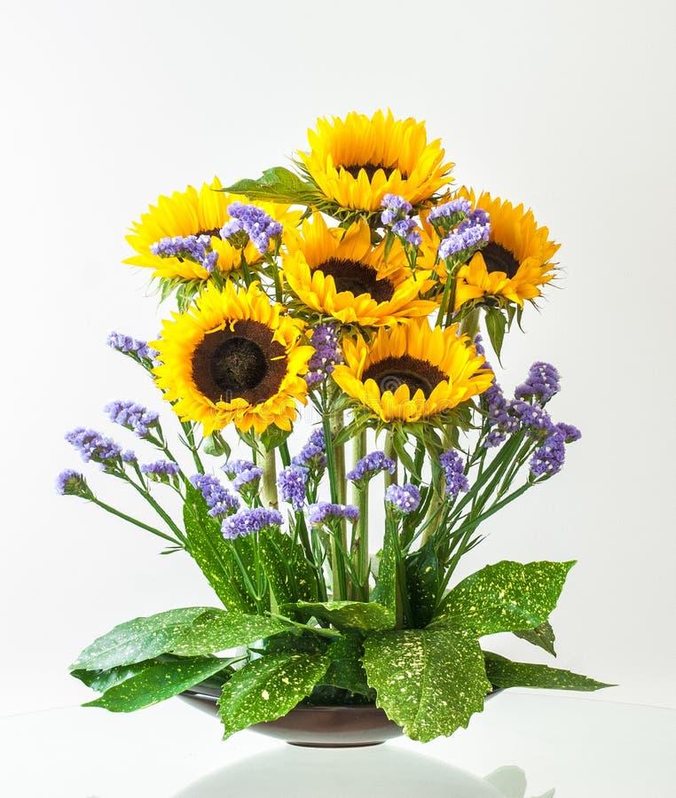Disposizione dei fiori con i girasoli immagine stock libera da diritti