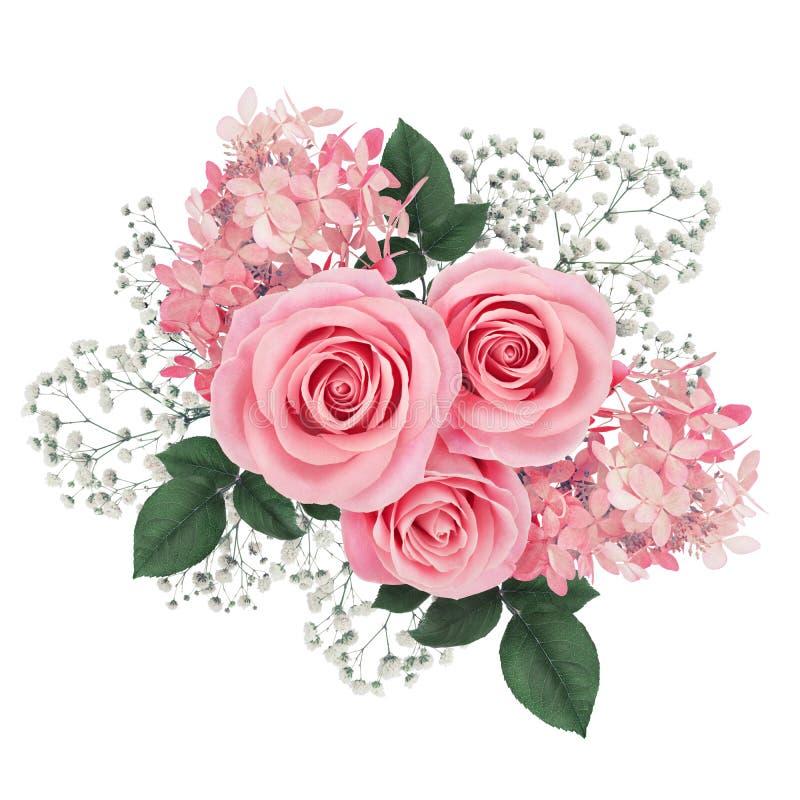 Disposizione dei fiori con le rose rosa e l'ortensia isolate su bianco fotografia stock libera da diritti