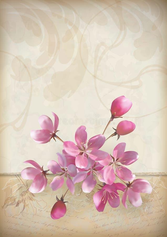 Disposizione dei fiori realistica del fiore di ciliegia di vettore royalty illustrazione gratis
