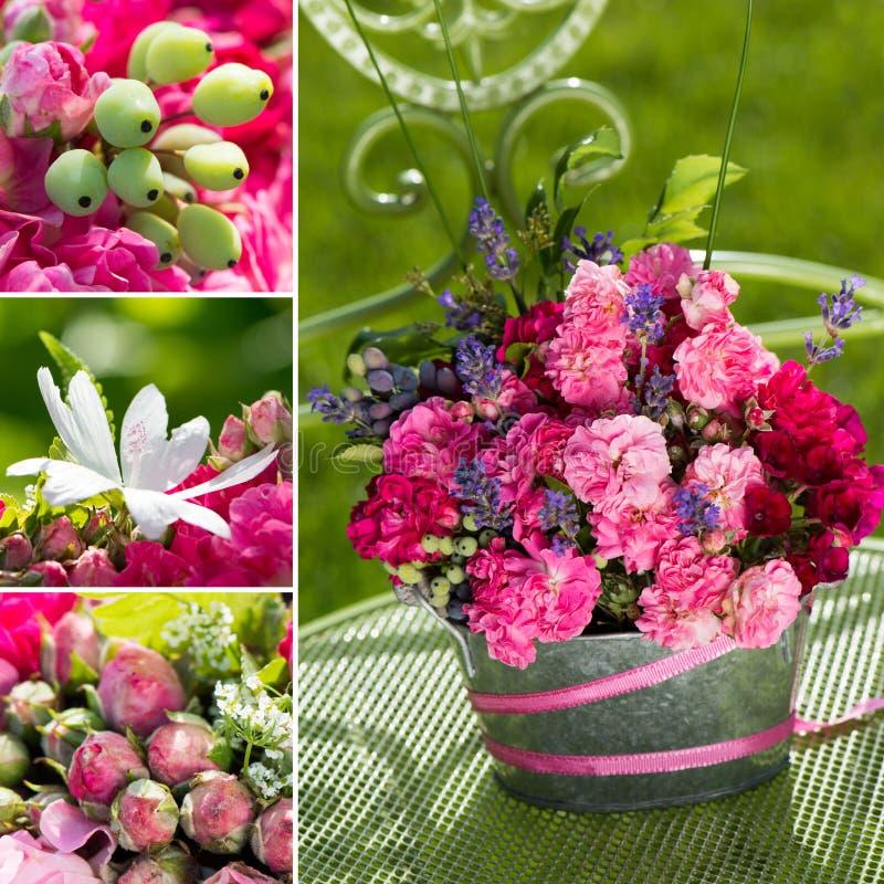 Disposizione del collage delle rose fotografie stock