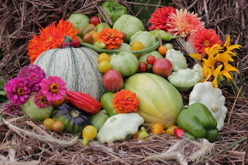 Disposizione delle verdure dal giardino su fieno immagini stock