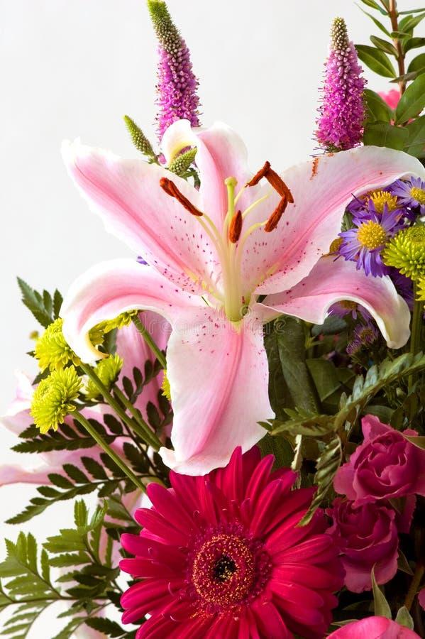 Disposizione di fiore di Lilly fotografie stock libere da diritti
