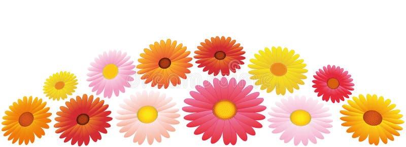 Disposizione di fiori gialla rosa arancio degli aster illustrazione vettoriale
