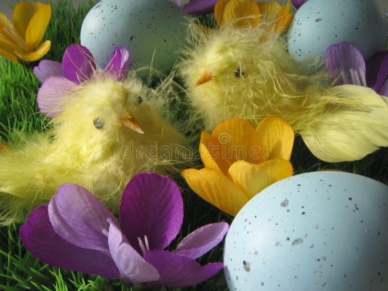Disposizione Di Pasqua Fotografia Stock
