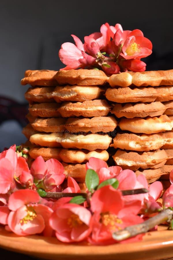 Disposizione dolce dell'alimento delle cialde del fiore fotografia stock libera da diritti