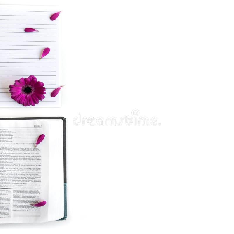 Disposizione piana: bibbia, libro e rosa aperti, porpora, violette, fiore rosso della gerbera con i petali immagini stock libere da diritti