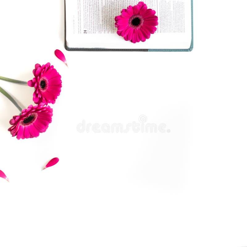 Disposizione piana: bibbia, libro e rosa aperti, porpora, violette, fiore rosso della gerbera con i petali immagine stock