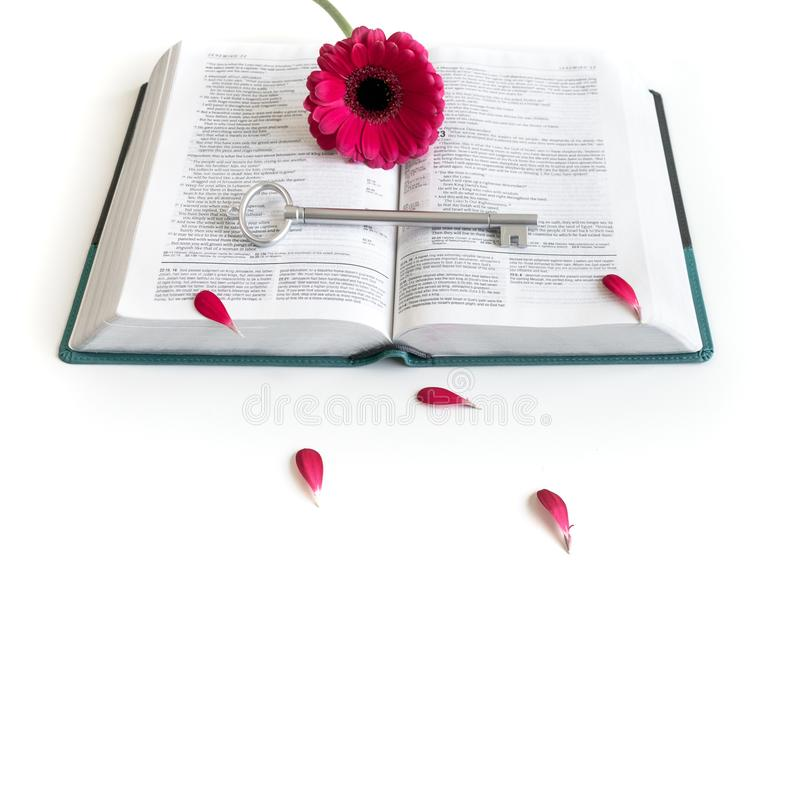 Disposizione piana: chiave aperta della bibbia, del libro, e rosa grigi/d'argento, porpora, violette, fiore rosso della gerbera c fotografia stock libera da diritti