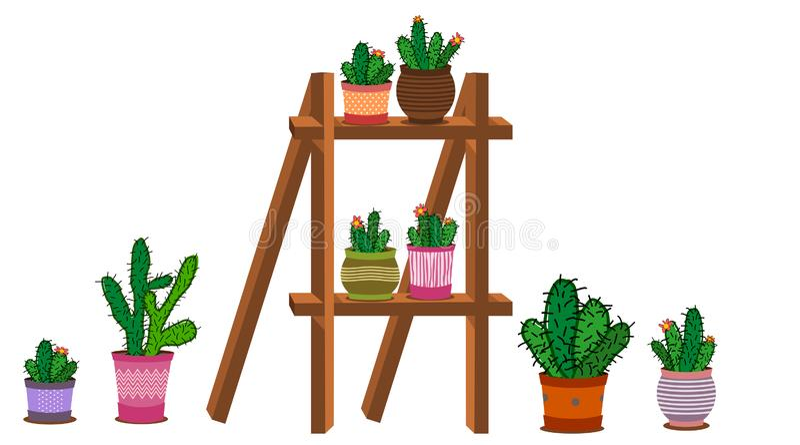 Disposizioni del cactus in un vaso illustrazione vettoriale