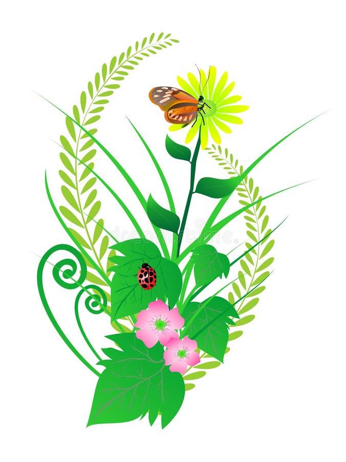 Disposizioni di fiore illustrazione vettoriale