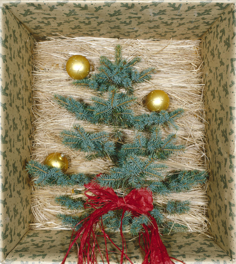 Disposizioni di Natale immagine stock