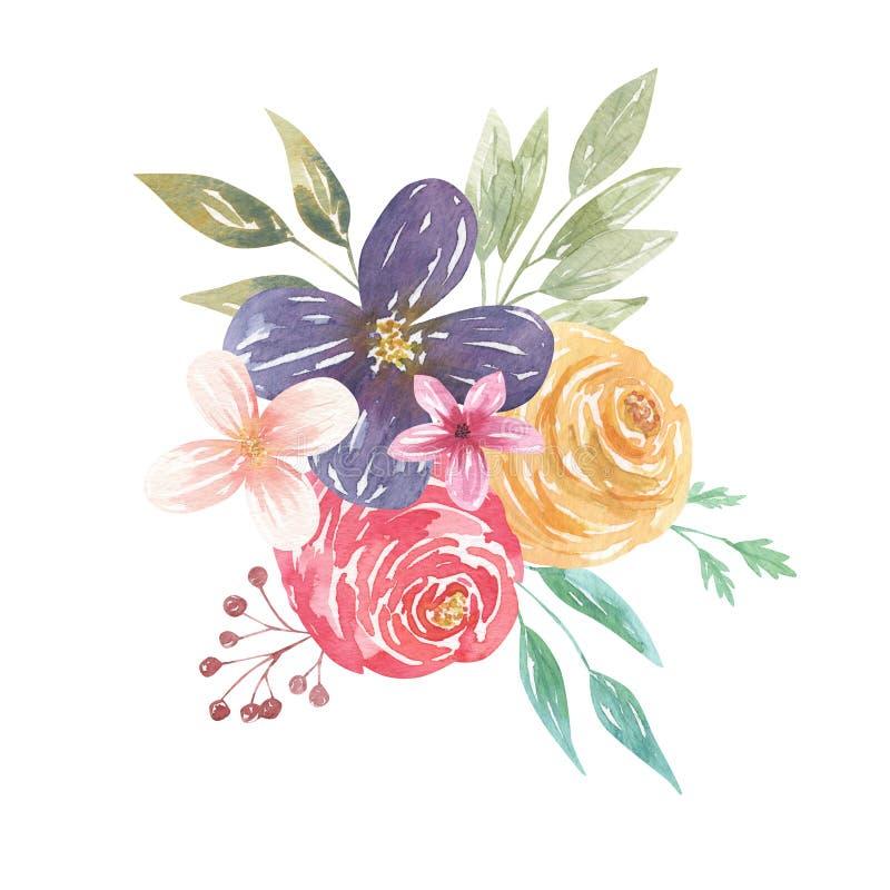 Disposizioni porpora delle bacche delle foglie rosa floreali dei fiori dei mazzi dell'acquerello royalty illustrazione gratis