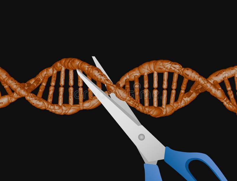 Disputa da patente de CRISPR ilustração royalty free
