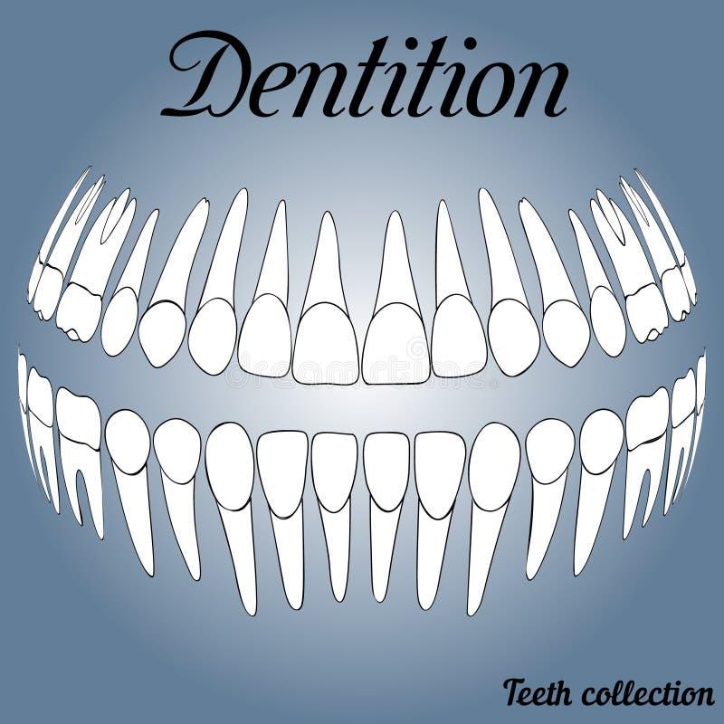 Disques dentaires 3D illustration de vecteur