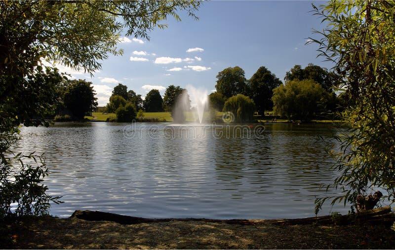 Diss仅仅喷泉和公园 图库摄影