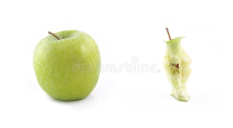 Dissekering av ett äpple arkivfoton