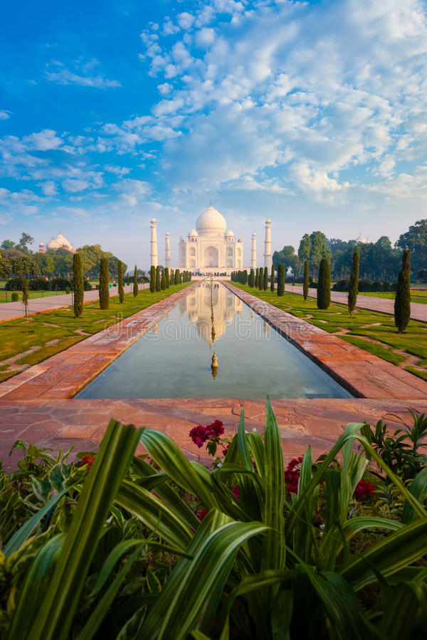 Distant Taj Mahal Reflection Fountain Flowers stock images