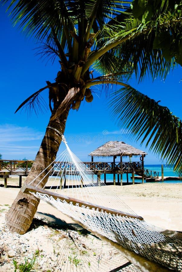 Distenda su una spiaggia tropicale! fotografia stock libera da diritti