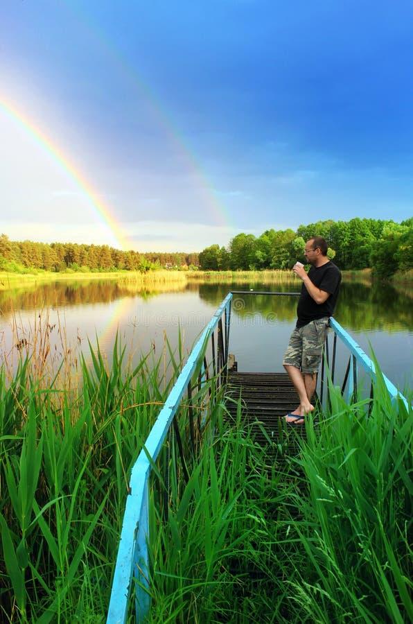 distendasi Vista del lago della foresta dopo la pioggia fotografia stock libera da diritti