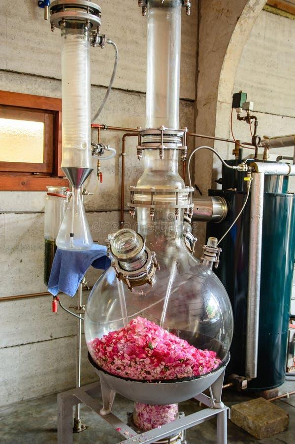 Distillatie van aromatische roze olie royalty-vrije stock fotografie