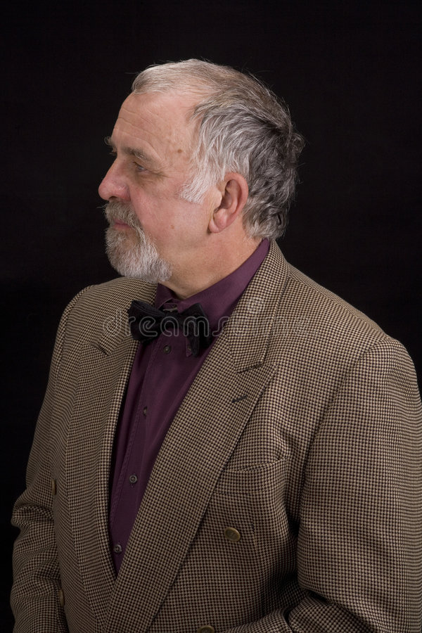 Distinguised older man royalty free stock photos